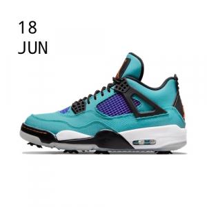Nike Air Jordan 4 Torrey