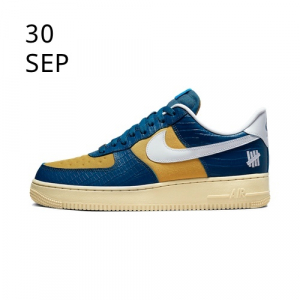 Nike x Undefeated Air Force 1 Dunk vs AF1 DM8462-400